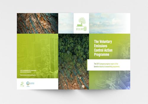 2017_VECAP_annual_report