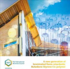 BSEF-Polymeric-brochure-Digital
