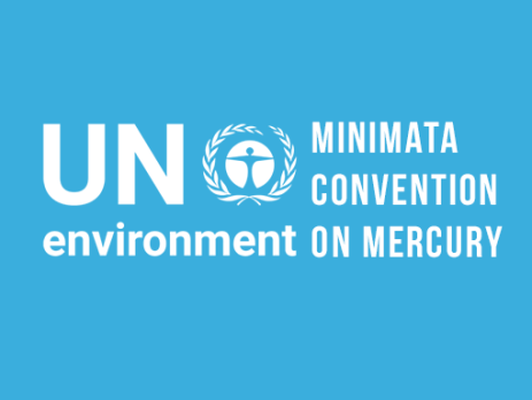 BSEF at the Second meeting of the Conference of the Parties to the Minamata Convention on Mercury (COP2)